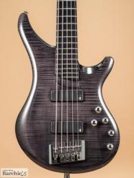 Vigier Guitars V5ECC Arpege, 5 strings